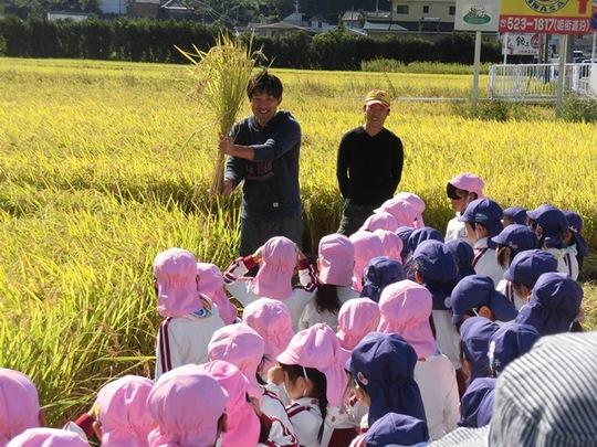 稲刈り体験1.JPG