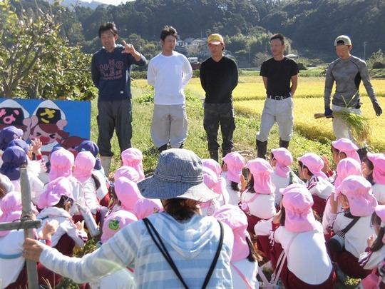 稲刈り体験3.JPG